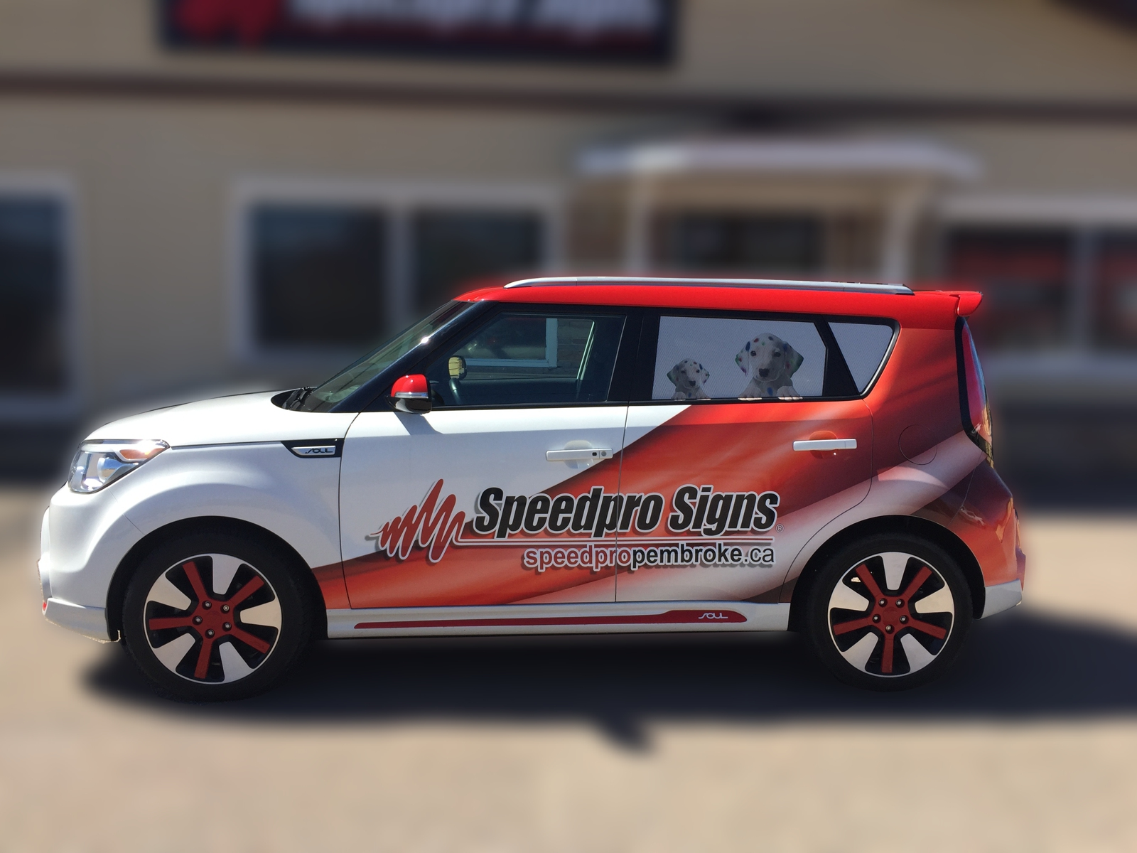 Vinyl Car And Vehicle Wraps Pembroke Speedpro Signs