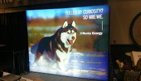 Backlit husky booth